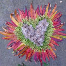 Heart 6 – 2011