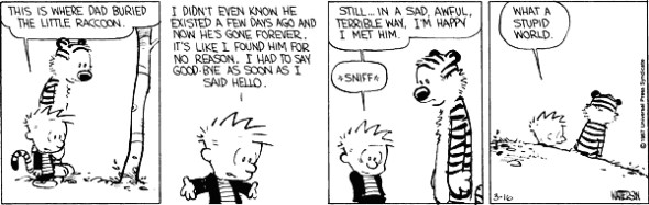 Calvin & Hobbes - Dead racoon